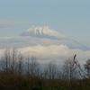 P1120654 11月18日 今朝の富士山
