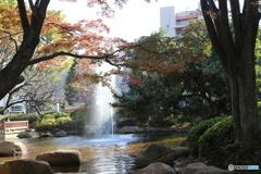 府中公園 噴水1