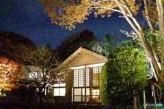 江戸東京たてもの園ライトアップ  前川國男邸