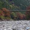 氷川小橋と紅葉2