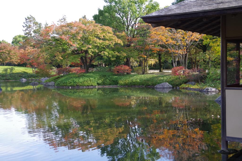 日本庭園(1)