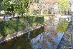 江戸東京たてもの園の堀1