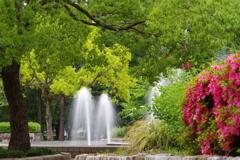 噴水と新緑とつつじ
