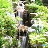 次郎弁天池の滝