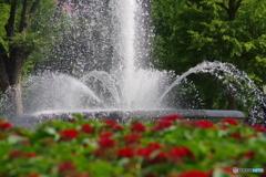 瞬美な噴水公園1