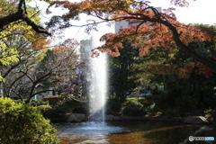 府中公園 噴水2