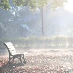 冬の早朝散歩 その2