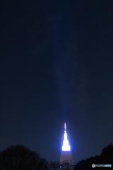 新宿御苑ライトアップ その8