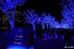 年末の渋谷の風景