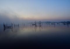 印旛沼朝景 霧