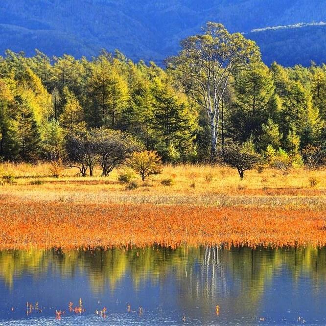 幻の小田代湖