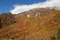 立山大観峰の紅葉4