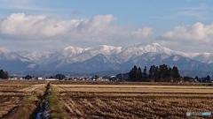穏やかな雪なし年末