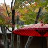 日本の秋・一条恵観山荘
