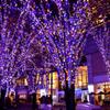 青と紫の空間