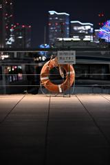 はまこれな風景 港・ヨコハマ