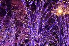 青の時間 グランモール公園MM21