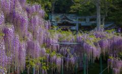 西寒田神社