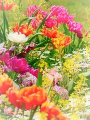 花咲く季節に。