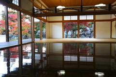宝徳寺の秋♪3