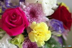 微笑みの花たち♪20