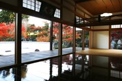 宝徳寺の秋♪2