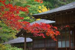 田母沢御用邸記念公園の秋♪8