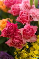 微笑みの花たち♪2