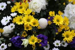 初春のほほえみ♪7