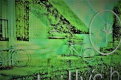 緑の蜃気楼を。。。夢見て走る!!!