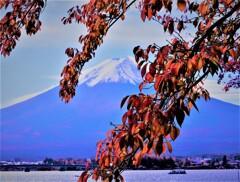 中秋の富士山