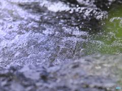 水は生命の源