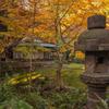 旧古河庭園1