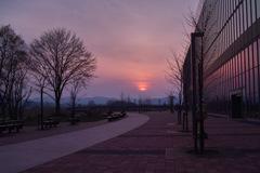 旭川駅南口から見た夕焼け