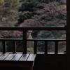 殿ヶ谷戸庭園 紅葉亭です。