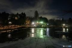 雪に覆われ凍る池底
