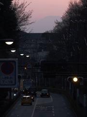 吉祥寺通りからの富士山