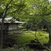 旧古河庭園の茶室