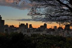 イブの日  横浜夕景