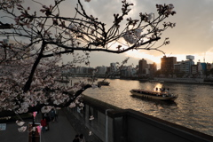 隅田川と屋形船