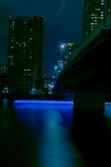 港南大橋をくぐり抜ける屋形船の光跡