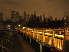 本日の七井橋