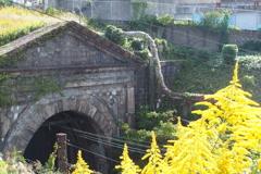 くろがね線 宮田山トンネル 1