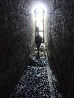 廃線トンネルを歩く 6(暗渠)