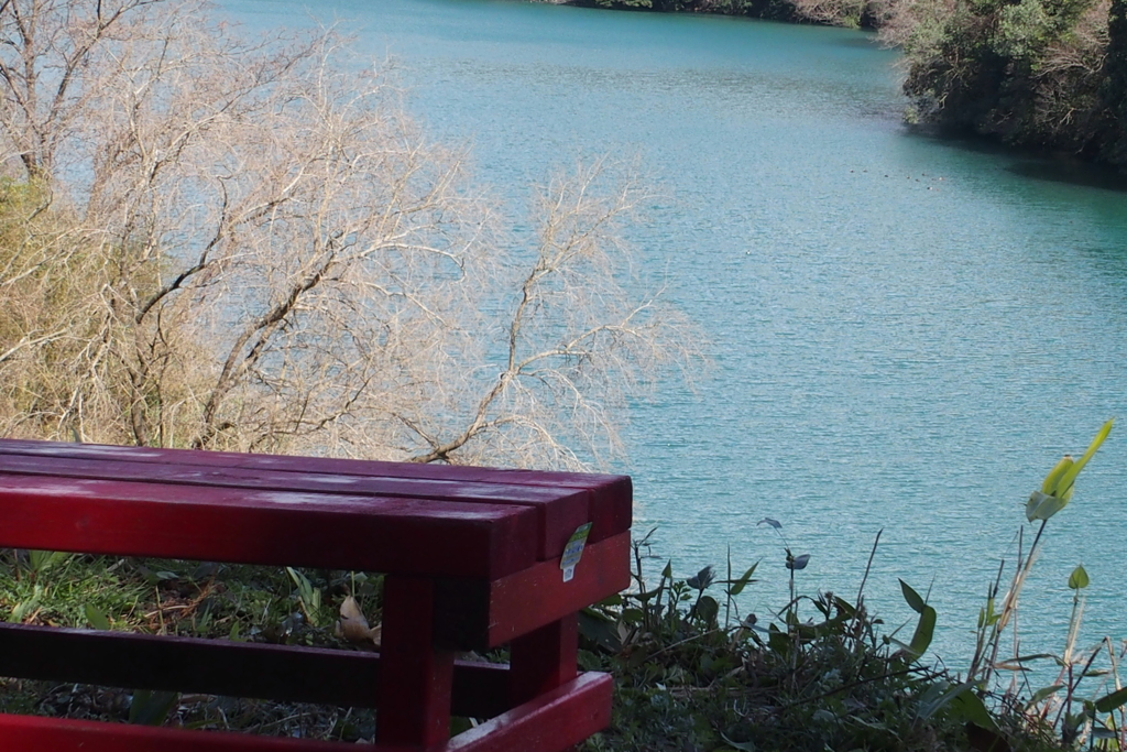 赤いベンチのある水辺