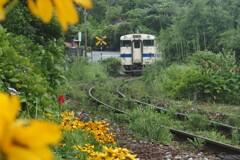 ローカル線の夏