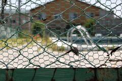取り壊される母校