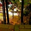 釜石 八幡神社