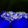 青い宝石箱