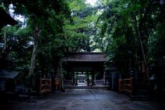 雨の豊四季諏訪神社